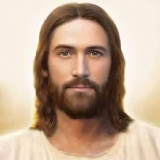 10 Frases Do Papa Francisco Sobre A Confissão Amor A Nossa Senhora